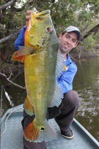 pescaria na amazônia