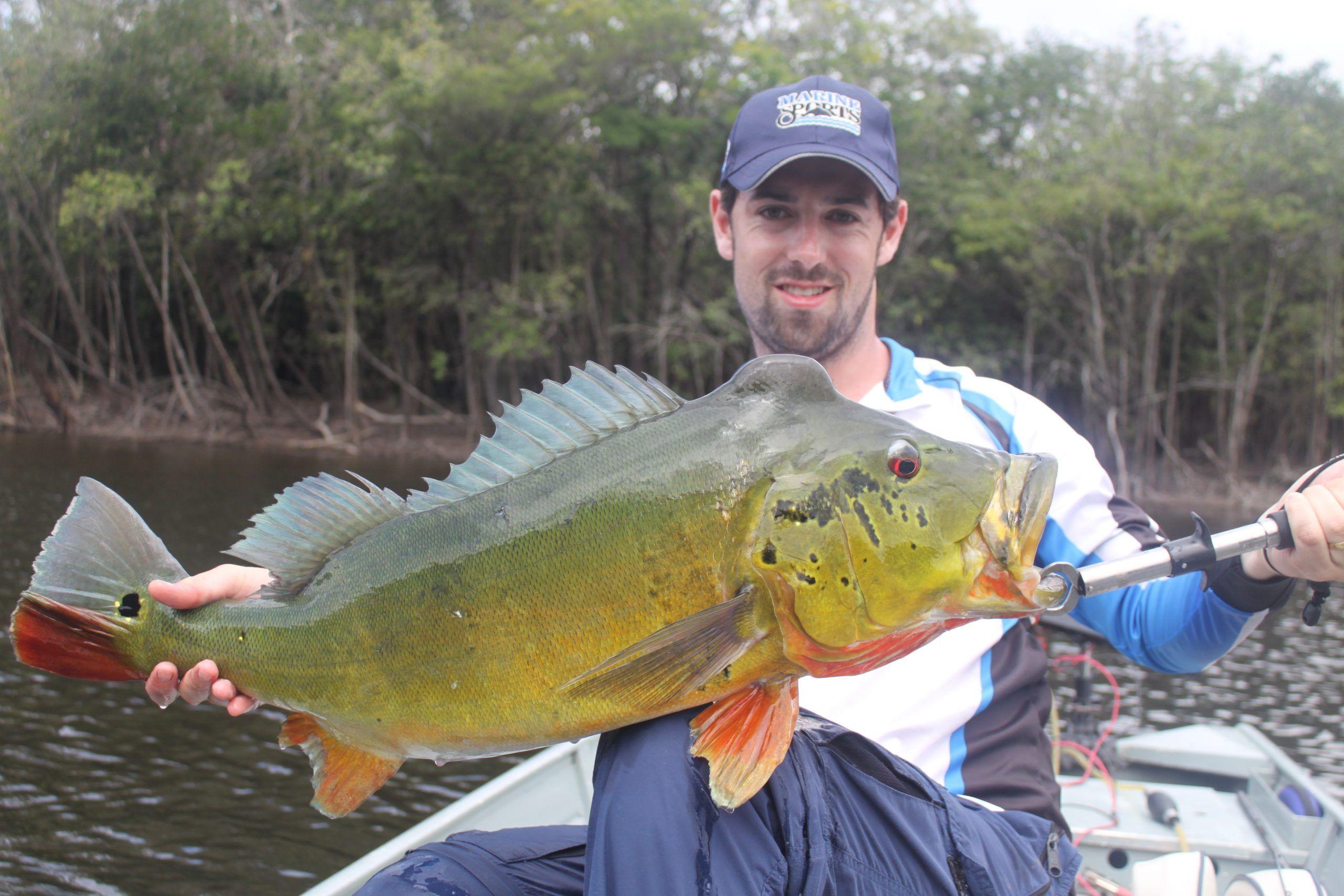 pacote pesca amazonia